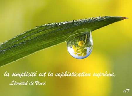 La simplicité est la sophistication suprême