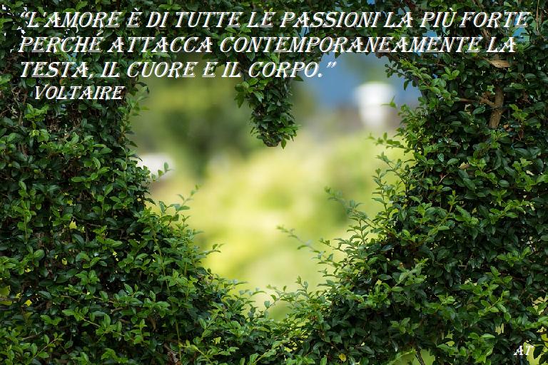 L'amore è di tutte le passioni la più forte