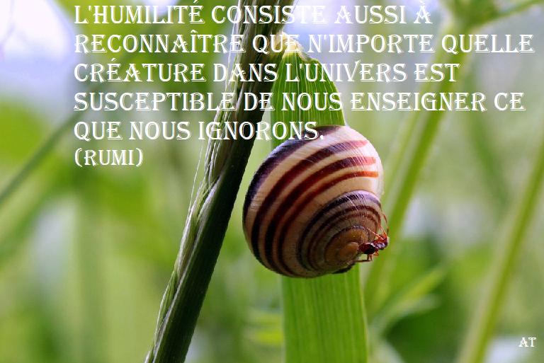L'humilité consiste aussi à reconnaître